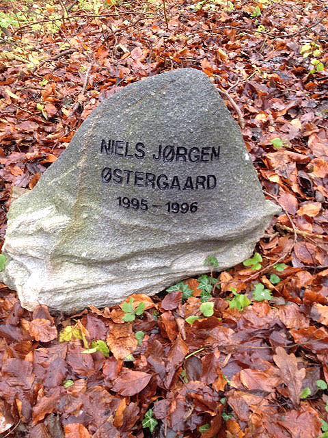 Østrup Præstegård Sten 18